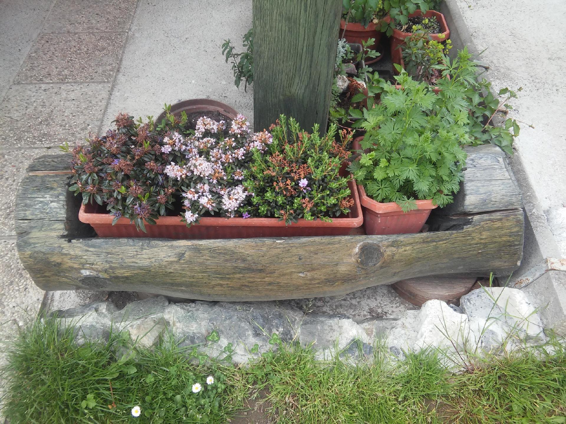cvetlična korita, kompostnik in nosilec za kole