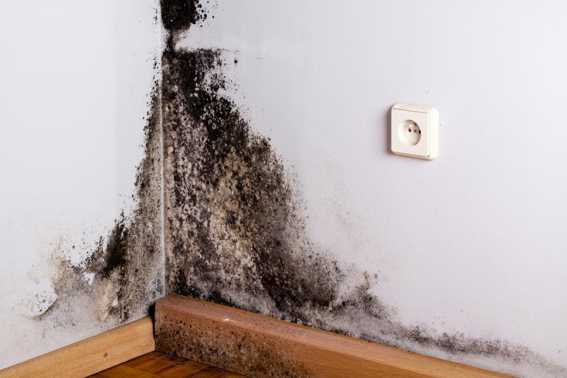 Sanacija starejše stavbe je lahko zelo zahtevna