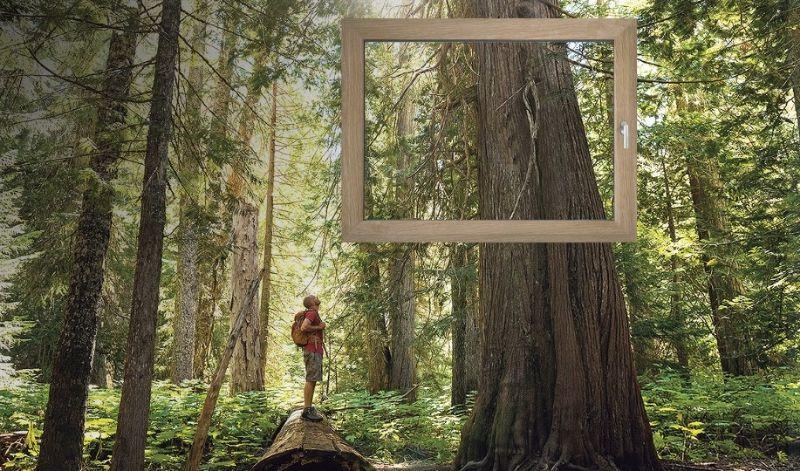 Ko je izbira med PVC in lesom preprosta