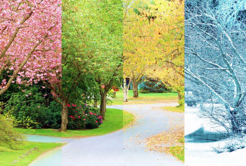Urejanje vrtov in čiščenje hiše - od poletja do zime
