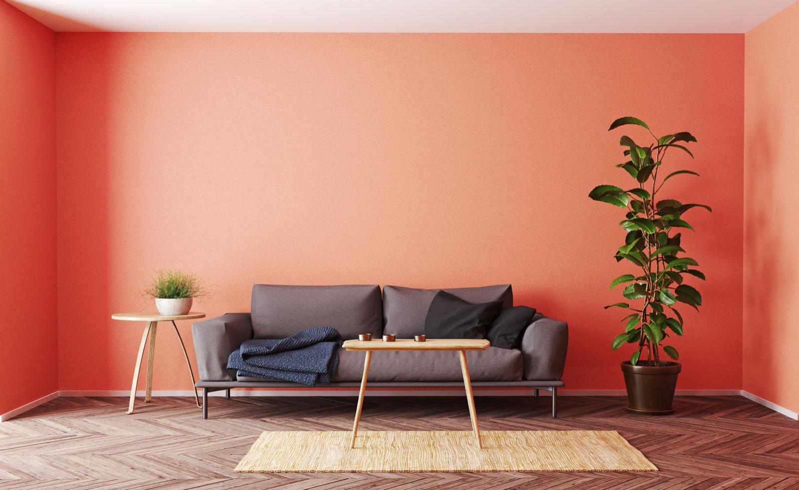 Barve za stene: vrste stenske barve